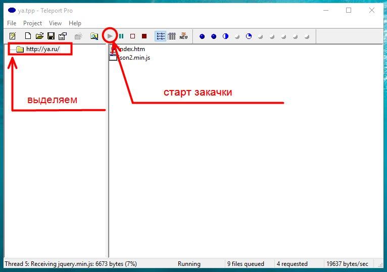 Старт закачки сайта в Teleport Pro