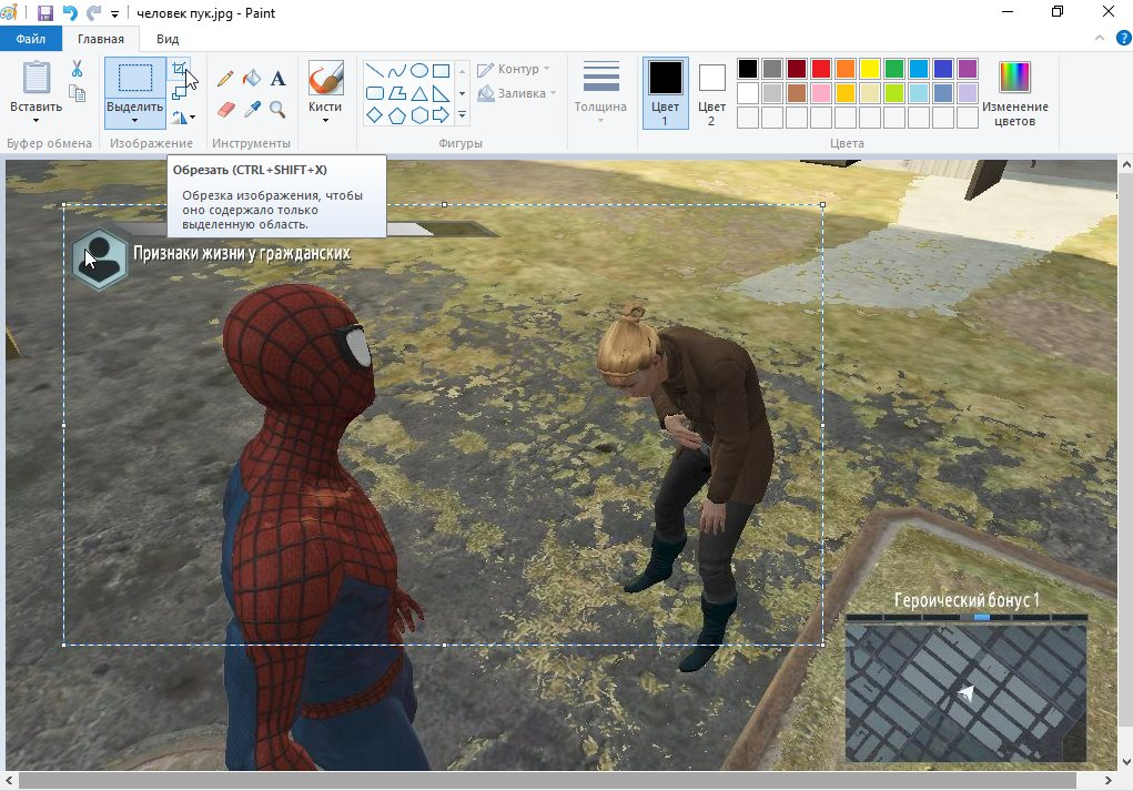 Обрезаем картинку в Paint по выделенной области